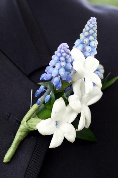 White bejeweled stephanotis with blue grape muscari boutonniere. They look bluebonnet-y!!