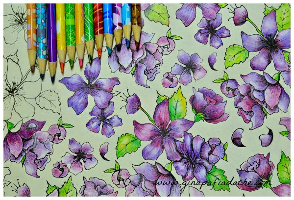 flor azul jardim secreto : flor azul jardim secreto:1000+ images about Adult coloring book inspirations on Pinterest