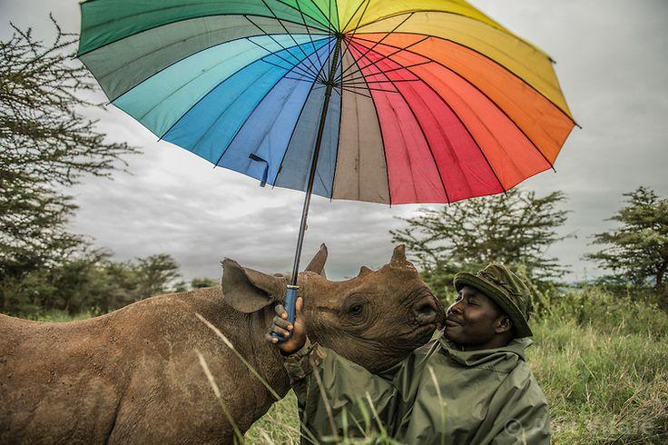 Photo Stories by Ami Vitale #Photography #Photojournalism #savetheplanet