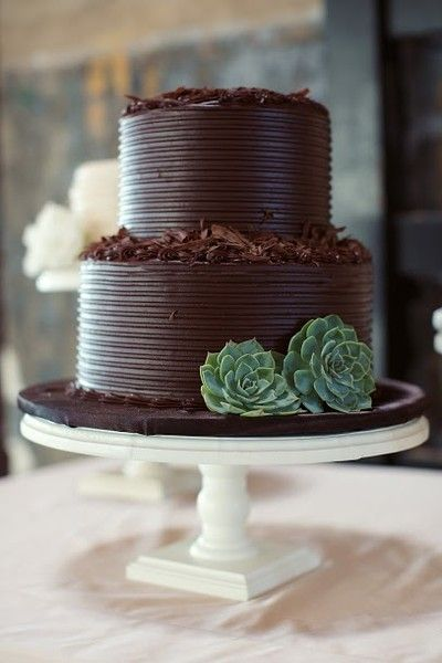 2 tier fudge cake with succulents and shavings by Frosted Art Bakery