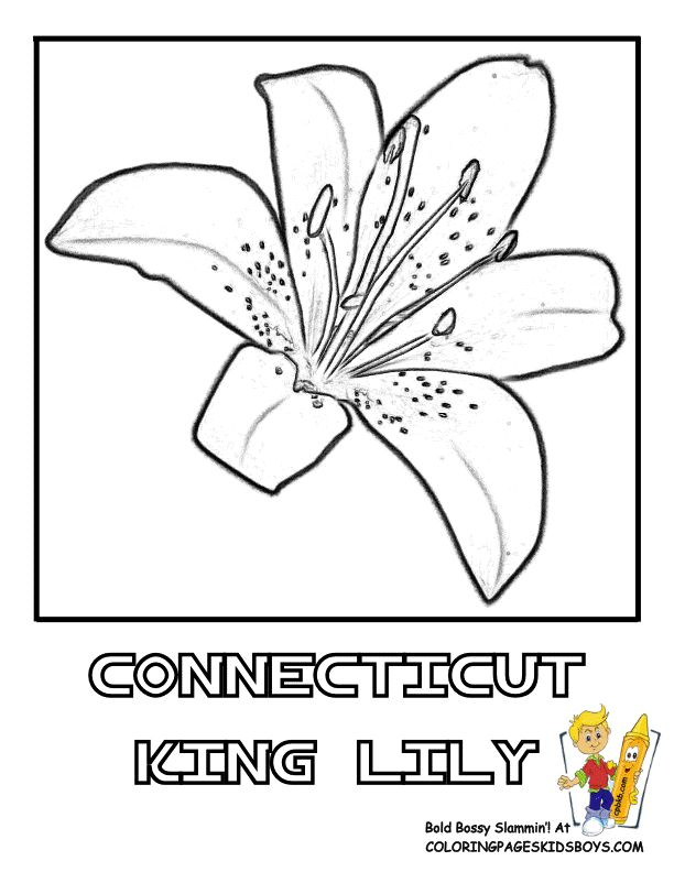 kevin henkes chrysanthemum coloring pages - photo#28