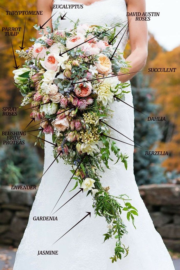 A Lush Cascading Bridal Bouquet Wedding Bouquets