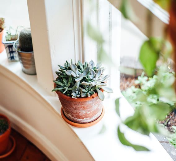 If you walk in your front door and immediately feel stuck and unhappy, a quick rebalance may be just the fix.