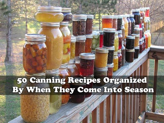 This is a really good resource for any of you who are into canning. If you have grown a garden this summer or if you simply have an abundance of vegetables and fruits that you want to preserve for winter, there are many ways of canning those foods. Traditionally, canning was a way to keep foods that were abundant in summer and make them last until the garden came out again the next year.