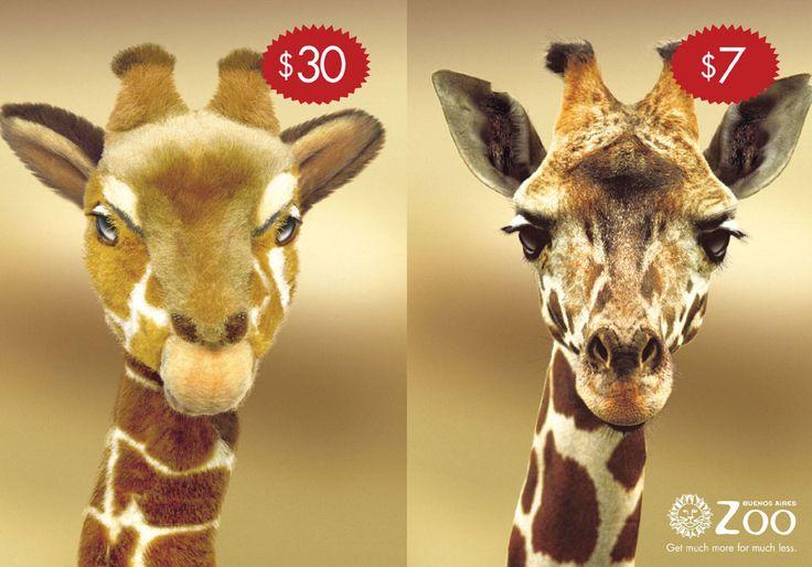"""Buenos Aires Zoo - """"Giraffe"""""""