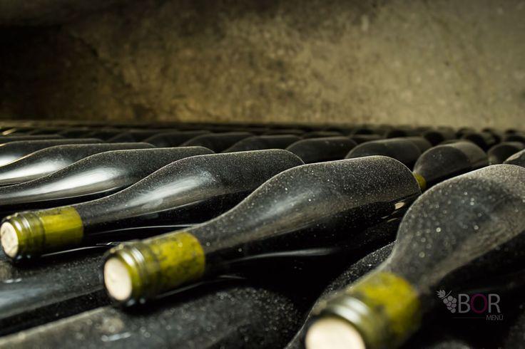 Barokk borbarangolás: Háromnapos boros program az Egri borvidéken Bolyki pince - Losonczy völgy itt: Eger, Heves megye