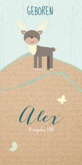 Hip geboortekaartje voor de geboorte van een jongen met een kartonnen achtergrond. Met een lieve illustratie van een hert in het bos.