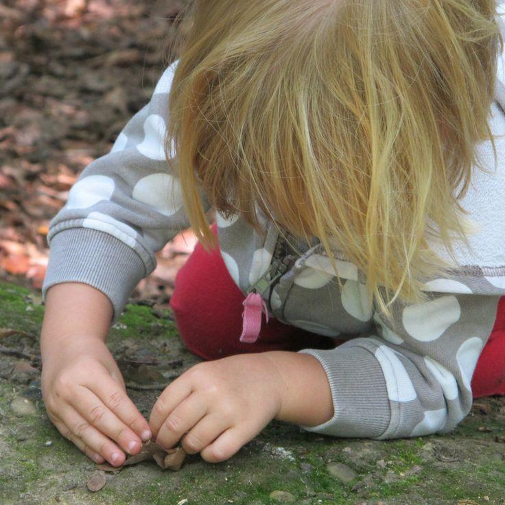 Schema's in Children's Play