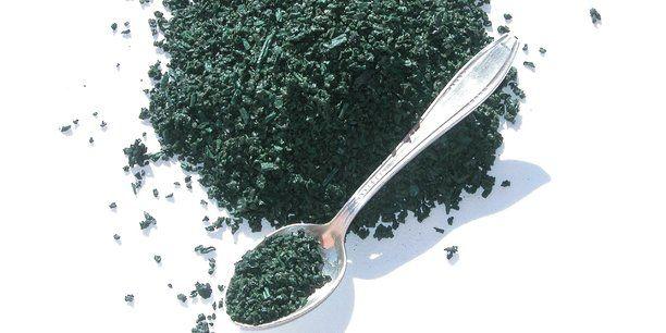 La spiruline est une micro-algue très protéinée connue depuis des millénaires. Ses propriétés nutritives intéressent tout aussi bien l'Occident que le Sud. Comment la consommer ? Par Gérard Tremblin, Le Mans Université et Brigitte Moreau, Le Mans Université.