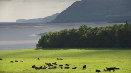 Views from Penrhyn Castle, Bangor, Gwynedd towards the North Wales Coast