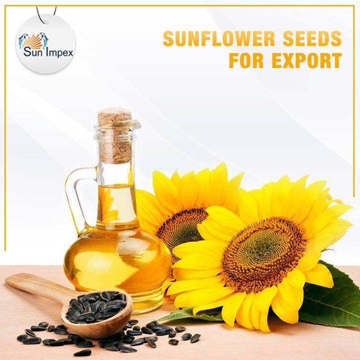 Sunflower Seeds has great demand in foreign Markets for its vitamin & mineral enriched qualities. The seeds are majorly used to extract their oil and striped sunflower seeds are primarily used for food. Sun Impex exports superior quality Sunflower Seeds procured from Ukraine and Russia worldwide. Its specifications are as follows: ■ Moisture: 7% ■ Impurity: 1% ■ Oil admixture: 3% To avail, visit: http://bit.ly/SI_Sunflower_Seeds