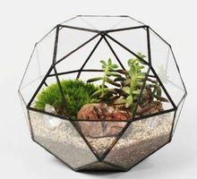 Geometrische glazen terraria voor thuis/kantoor/bruiloft decoratie, creatieve geodetische koepel terraria van planten en vissen(China (Mainland))