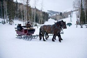 Deer Valley Resort horse-drawn sleigh in Utah.: Sleigh Riding Parks Cities, Ski Resorts, Favorite Places, Sleigh Rides, Deer Parks, Skiing Resorts, Balloon, Deer Valley, Parks Resorts