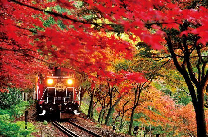 【2017】京都・嵐山の紅葉を巡る王道モデルコース!ライトアップや見頃情報も @jalannet