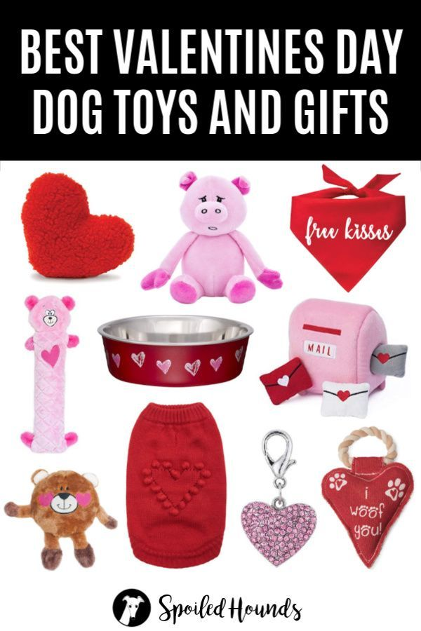 Best Valentine S Day Dog Toys And Gifts On Amazon Valentines Day
