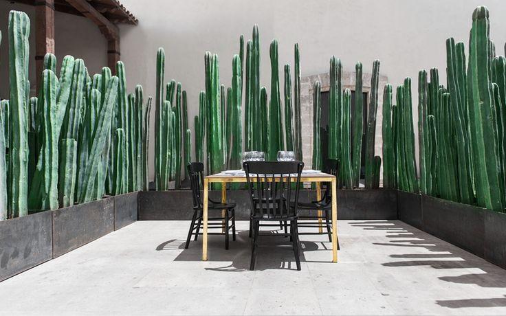 El Montero, es un restaurante ubicado en Saltillo Coahuila, una ciudad cercana a la frontera norte de México.   Su cocina es un reflejo de su entorno en uno de los desiertos Mexicanos. Su menú se inspira en la cocina regional tradicional tomando algunos elementos de la cocina contemporánea.   El proyecto fue desarrollado dentro de una construcción de la época colonial y su desarrollo se llevó a cabo con mucho respecto y cuidado hacia los elementos de esta edificación, considerada patrimonio…