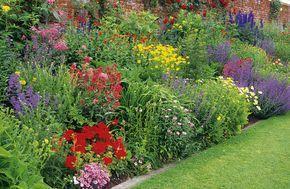 Pour fleurir ses massifs sans tout acheter en jardinerie, miser sur les vivaces et suivez nos tours de main pour en tirer le meilleur parti.