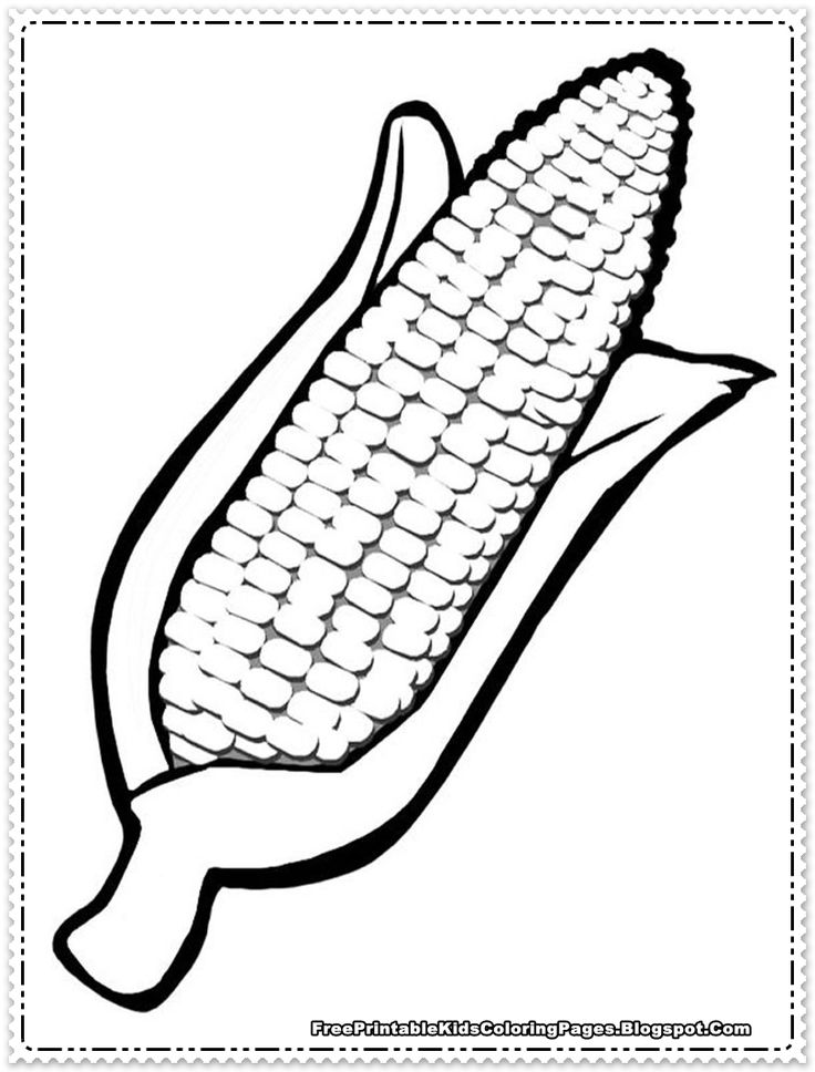 Corn Coloring Pages Printable Thanksgiving