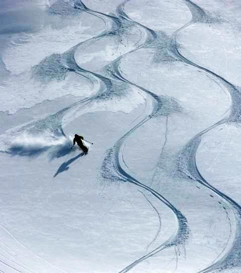 ski . Trade like a Predictor. http://www.forexleopard.com/