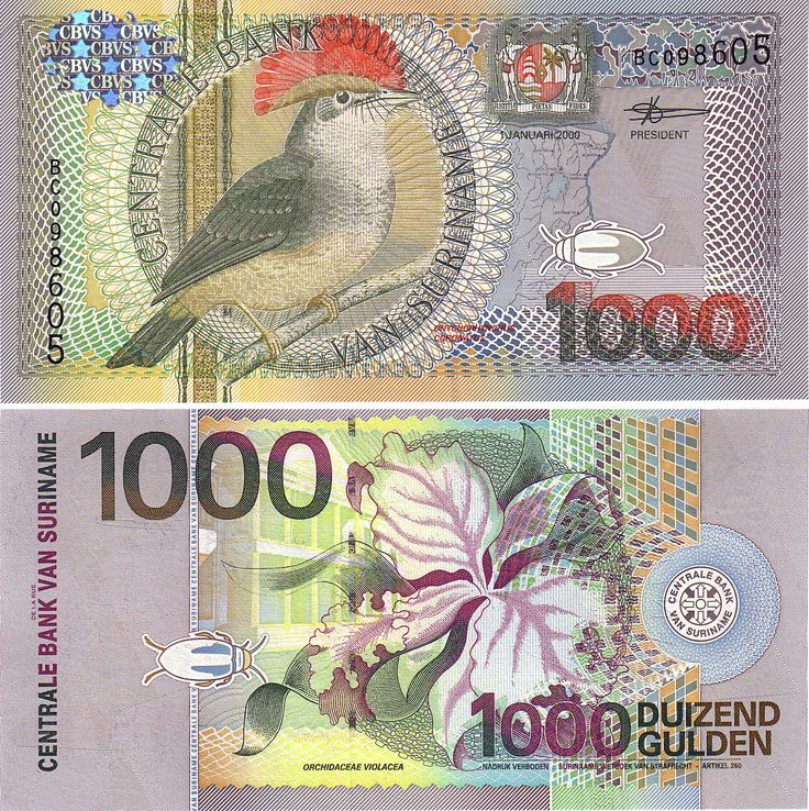 Suriname currency