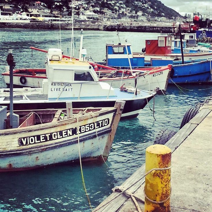 simons town, south africa.