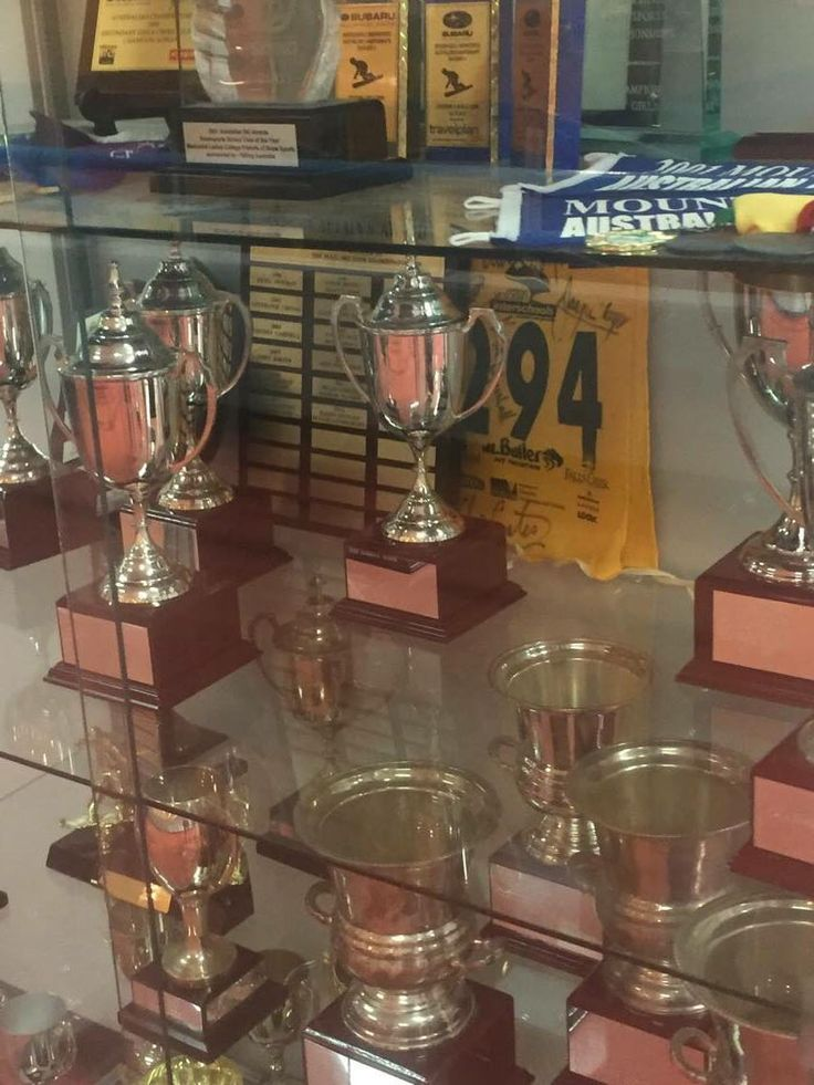 Individual Level: Trophies on display around the school motivate students to be move active and achieve their goals.