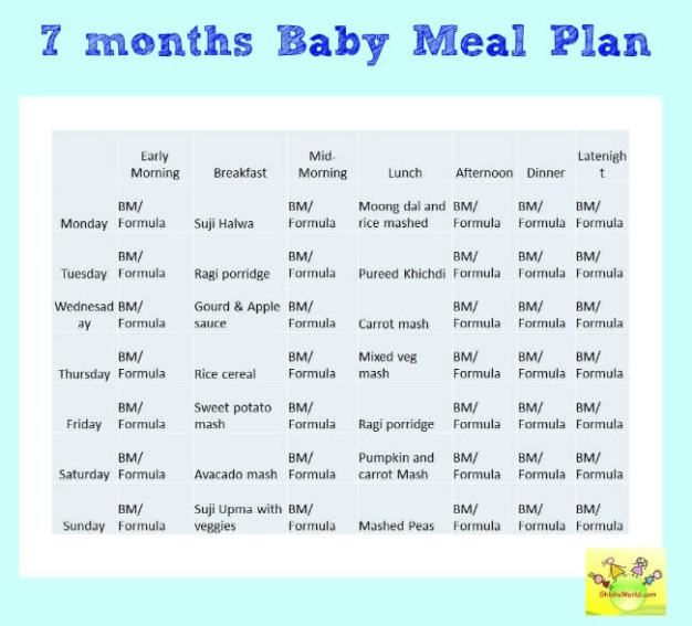 7 months baby food chart/ meal plan