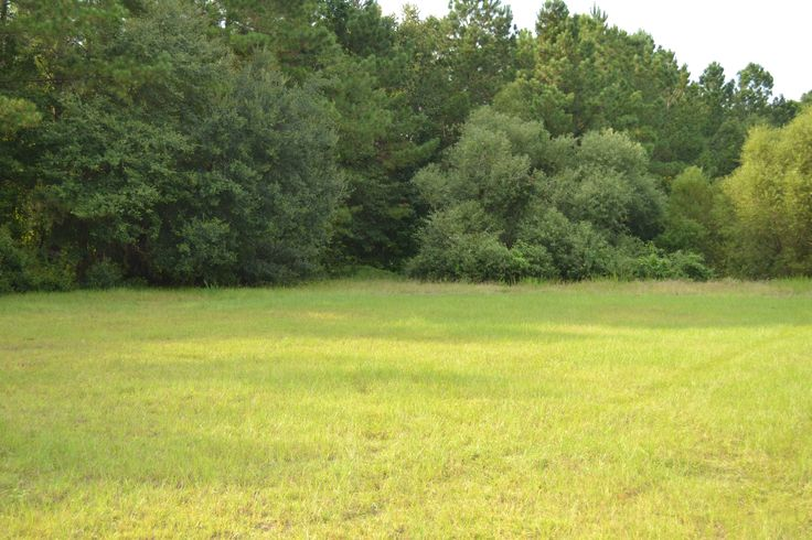Dixie Plantation Rd, lot A-2; 0.25 acres by a pond