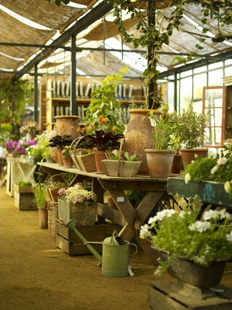 Petersham Nursery - just across the river from me!
