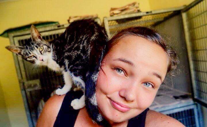 Ben je gek op dieren? Ga dan als vrijwilliger aan de slag in een dierenasiel in Suriname #vrijwilligwereldwijd #suriname #dierenasiel #vrijwilligerswerkbuitenland #travel #explore #animals