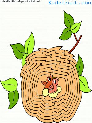 Printable Maze 10 for Kids - Help the little birds to getout of their nest., colored Picture