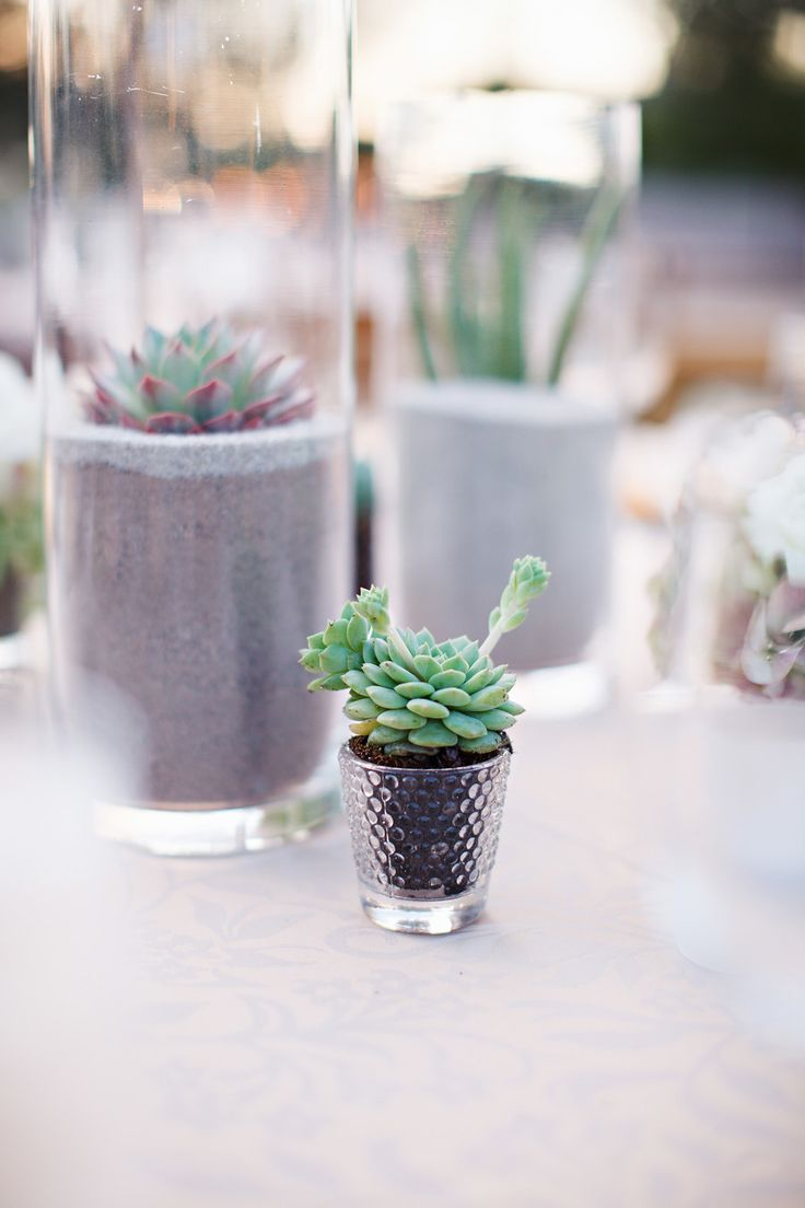 11 best Liberty Warehouse Wedding - Succulent Wedding at Liberty ...