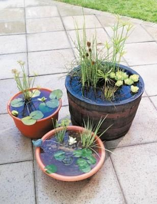 How to make an outdoor water garden: This is so #garden design #modern garden design #garden interior design #garden design #garden decorating before and after| http://garden-decorating-green.blogspot.com