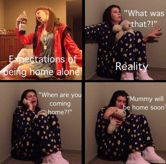 When home alone // funny pictures - funny photos - funny images - funny pics - funny quotes - #lol #humor #funnypictures