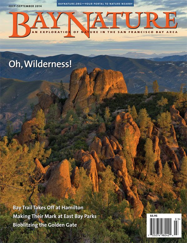 14 best bay nature magazine issues images on pinterest bay area bay nature magazines july september issue explores the wilderness in our backyard on the fandeluxe Image collections