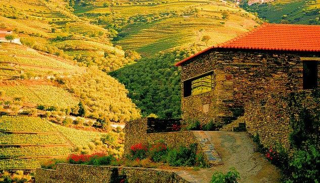 Douro`houses - Douro - PORTUGAL