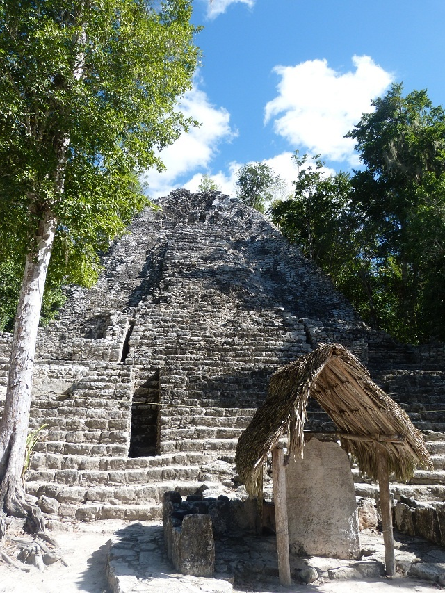 Coba is an ancient Mayan ruin with fewer visitors and still somewhat covered in jungle growth. Your fellow travel companions here may be birds and monkeys. http://www.playa.info/playa-del-carmen-info-mayan-ruins-of-coba.html