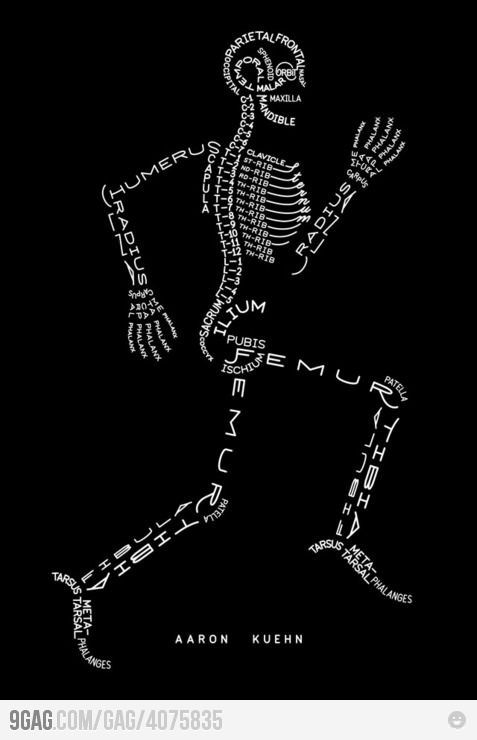 interesting way to review the skeletal system