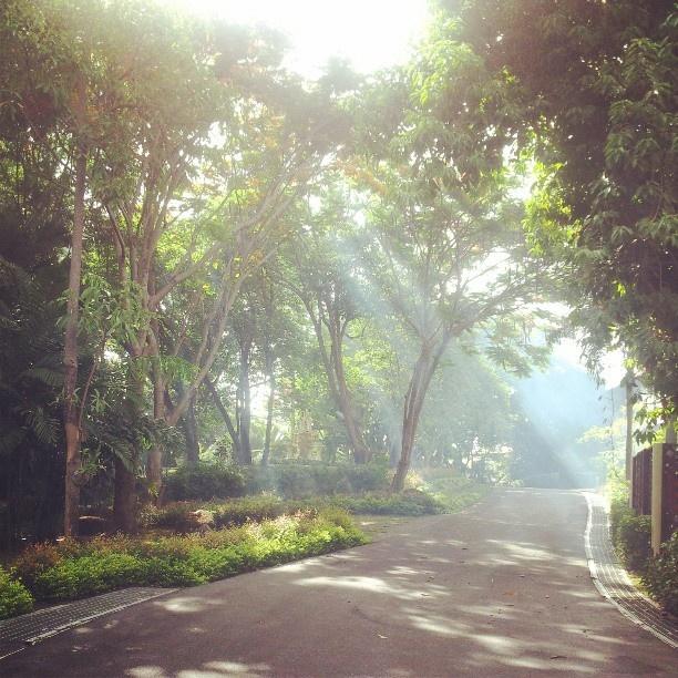 .@katamandavilla   Walk way in Katamanda Villa #katamandaestate #katabeach #katanoibeach #karon ...   Webstagram - the best Instagram viewer