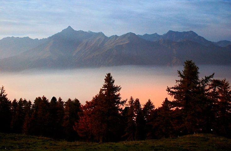 Alla scoperta della Val Susa piemontese e dei suoi trofei. Infatti in primavera il bosco regala splendidi palchi di cervo.