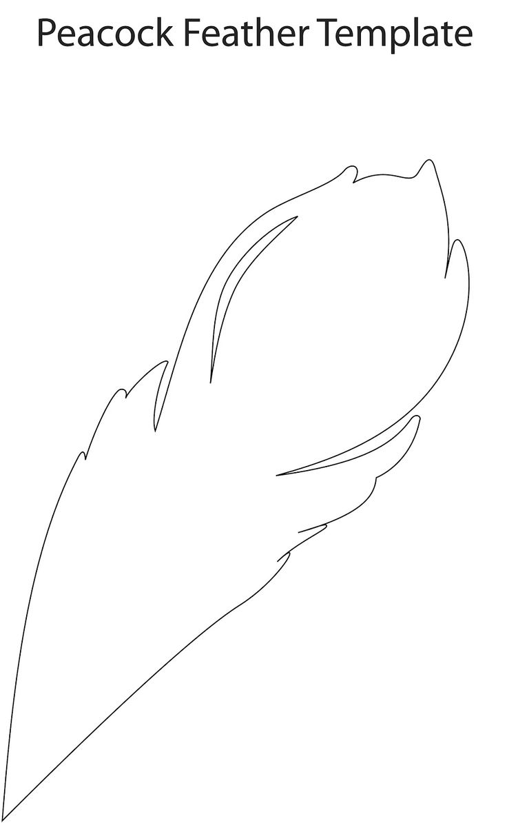 Feather cut out pictures to pin on pinterest pinsdaddy for Feather outline template