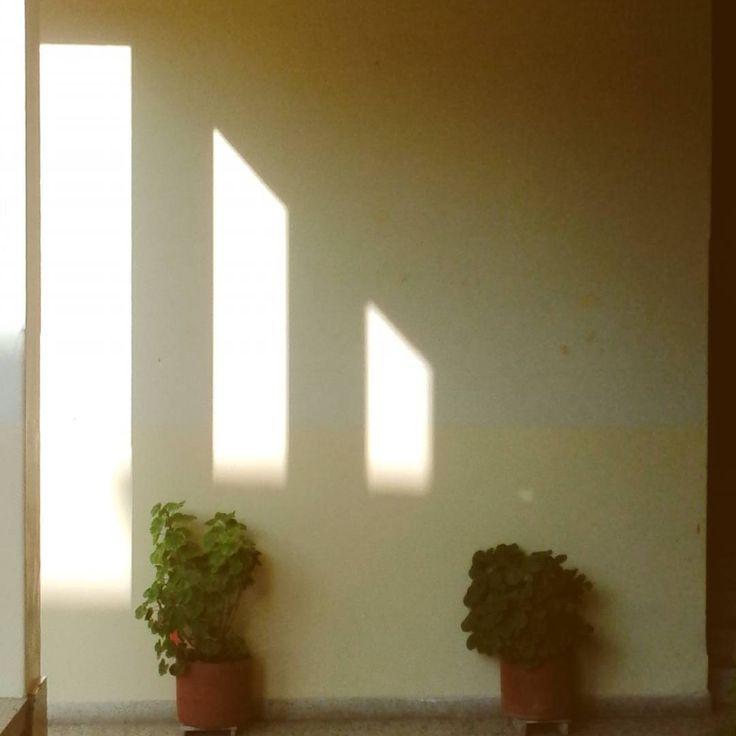"""11 Me gusta, 1 comentarios - D (@elmarenlaventana) en Instagram: """"La luz de la tarde. #sombras #shadows #sunset #atardecer #elcarmendeviboral #antioquia #colombia"""""""