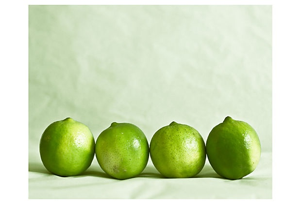 Sandra Proudman, Lime Line on OneKingsLane.com