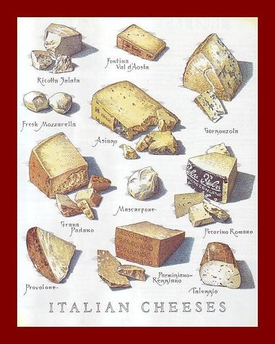 #Italian #Cheese #Illustration