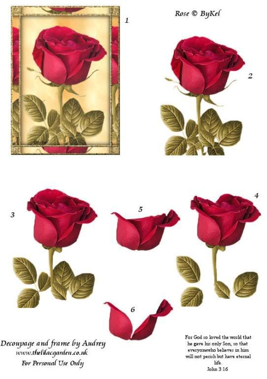 Floral 3D Sheets Photos by spyrocatgirl on Photobucket