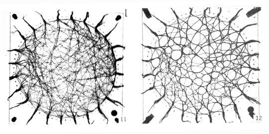Parametrische Formfindungsprozesse in der Landschaftsarchitektur