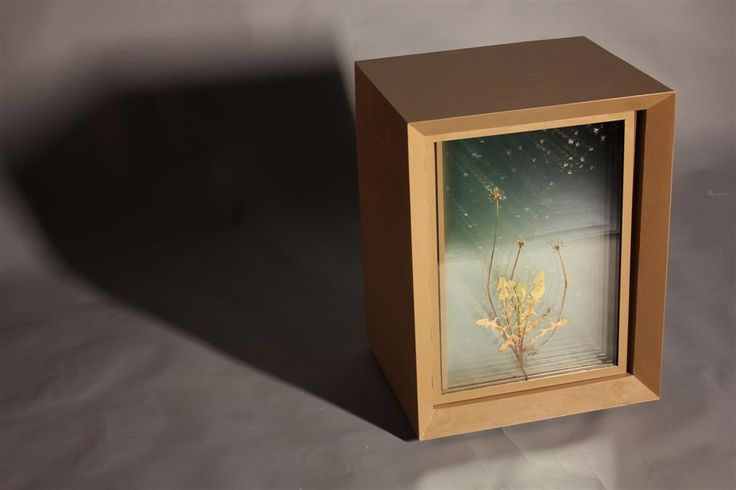 Time Metaphor/ Metaphor of time (2013, black walnut, glass, dandelion, 47x53x57) Time and my inexhaustible drive to catch it with my sculptures have been the focal points of my art, for long. How c...
