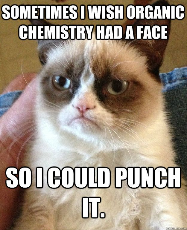 5e85cb502b1e1b28b2481a173956397c grumpy cat quotes grumpy cat meme 87 best ap chemistry memes images on pinterest science cat,Funny Organic Chemistry Memes