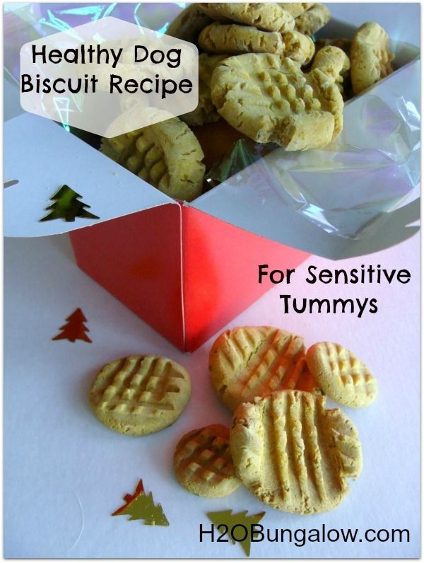 Don't Forget The Furry Members Of The Family...Healthy Dog Biscuit Recipe For Sensitive Tummys Get Your Holiday Gift Certificate Here - Give The Gift Of Natural Health: http://drdeborahbaker.com/gift