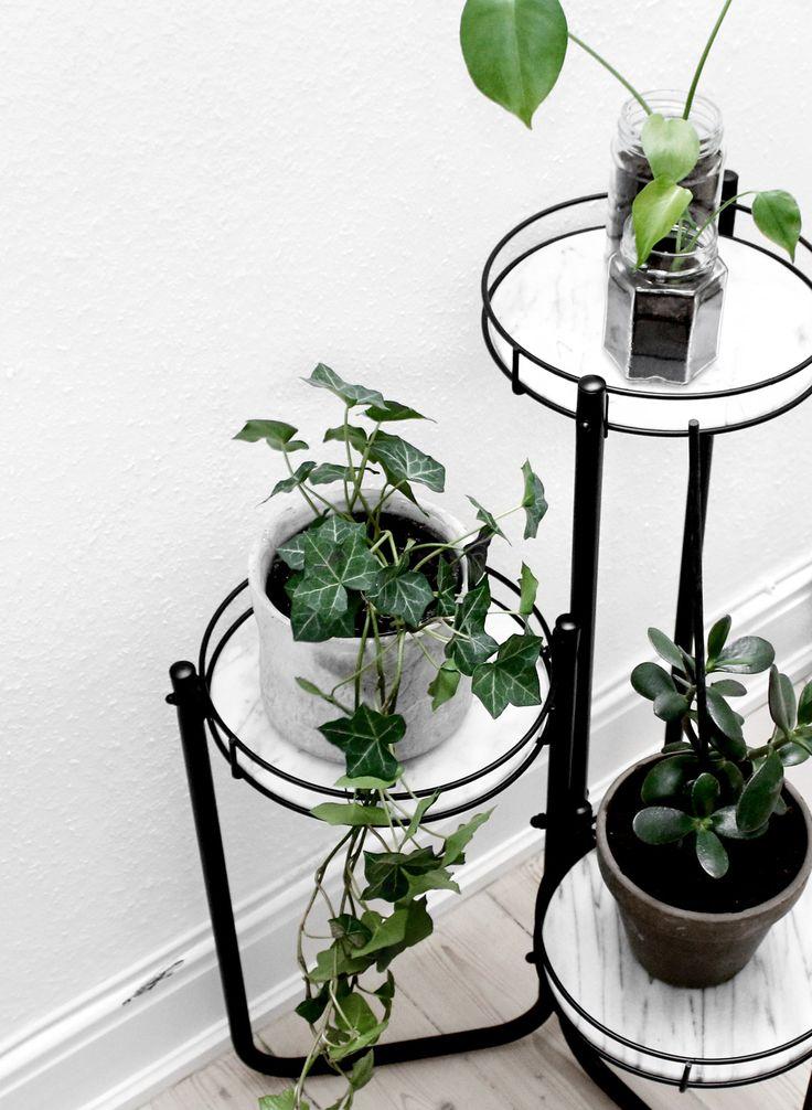 DIY plante stativ / plant display - Katarina Natalie